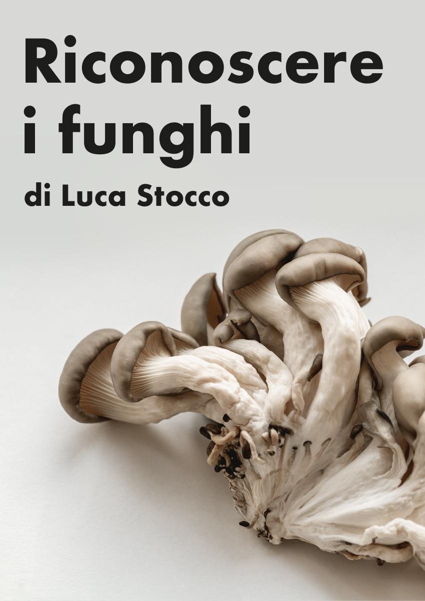 Riconoscere i funghi